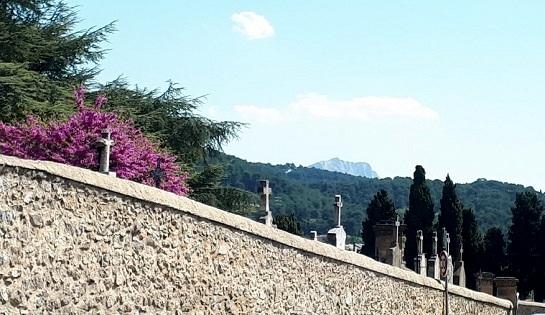 Le cimetière Saint-Pierre, un  lieu de la mémoire aixoise.