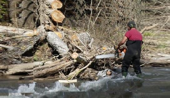 Le SABA: au chevet des cours d'eau