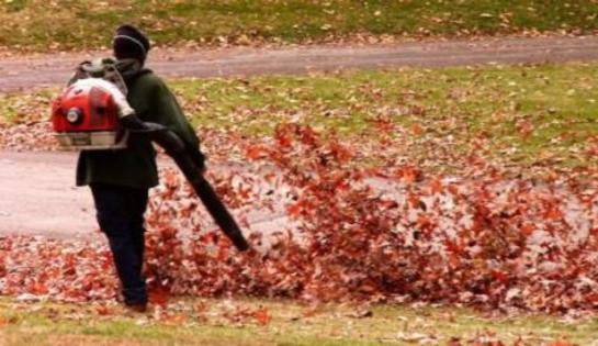 Les feuilles mortes se ramassent à la souffleuse, les allergies et les migraines aussi…